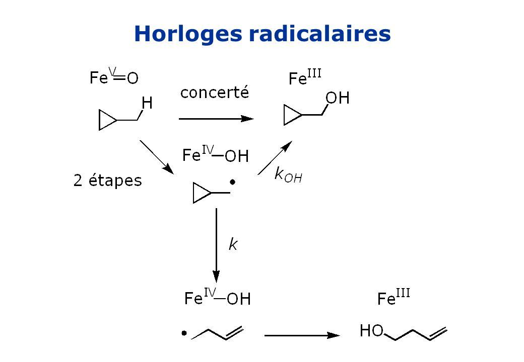 Effet isotopique k H /k D