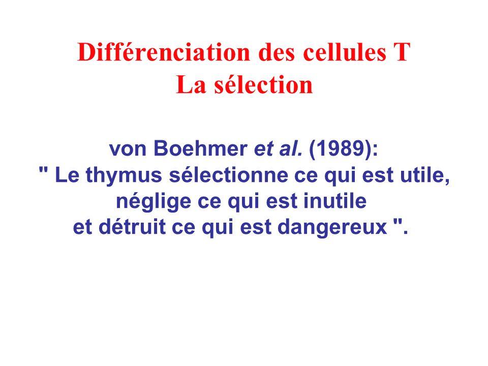 von Boehmer et al. (1989):