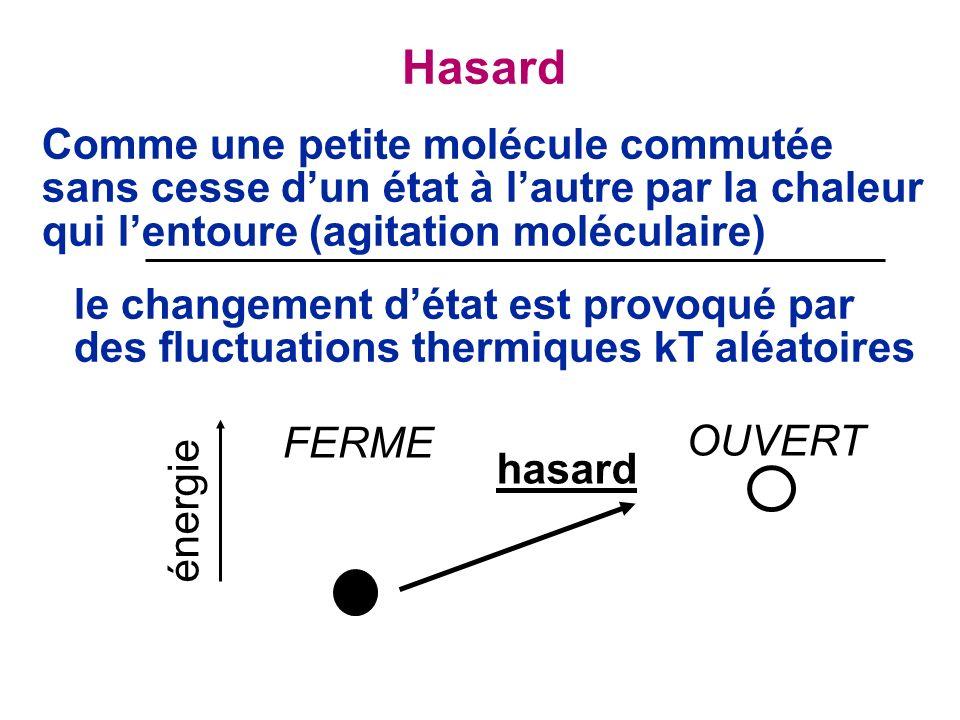 Comme une petite molécule commutée sans cesse dun état à lautre par la chaleur qui lentoure (agitation moléculaire) le changement détat est provoqué par des fluctuations thermiques kT aléatoires FERME hasard OUVERT énergie Hasard