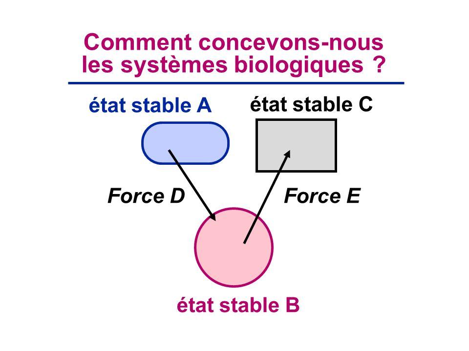 Force DForce E état stable B état stable A état stable C