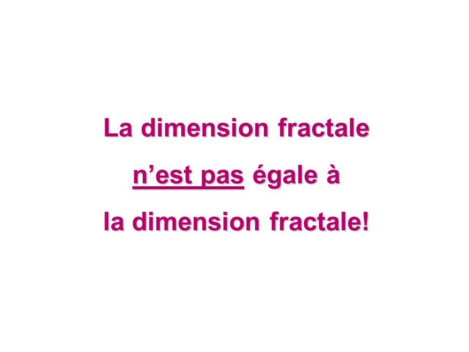 La dimension fractale nest pas égale à la dimension fractale!