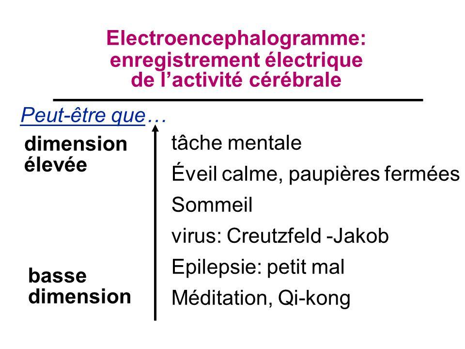 tâche mentale Éveil calme, paupières fermées Sommeil virus: Creutzfeld -Jakob Epilepsie: petit mal Méditation, Qi-kong Electroencephalogramme: enregistrement électrique de lactivité cérébrale Peut-être que… dimension élevée basse dimension