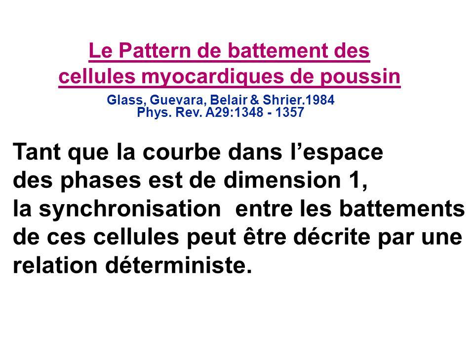 Le Pattern de battement des cellules myocardiques de poussin Glass, Guevara, Belair & Shrier.1984 Phys. Rev. A29:1348 - 1357 Tant que la courbe dans l