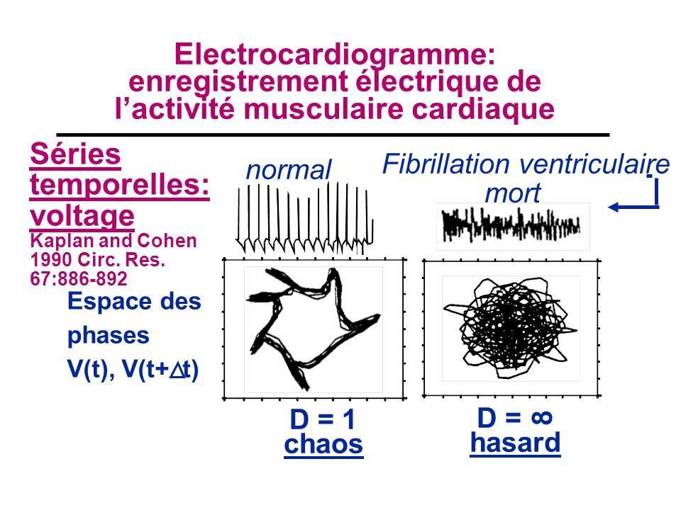 Séries temporelles: voltage Kaplan and Cohen 1990 Circ. Res. 67:886-892 normal Fibrillation ventriculaire mort D = 1 chaos D = hasard Espace des phase
