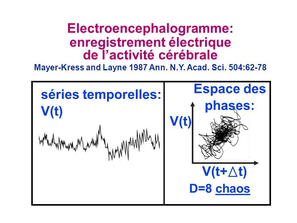 Electroencephalogramme: enregistrement électrique de lactivité cérébrale Mayer-Kress and Layne 1987 Ann. N.Y. Acad. Sci. 504:62-78 séries temporelles: