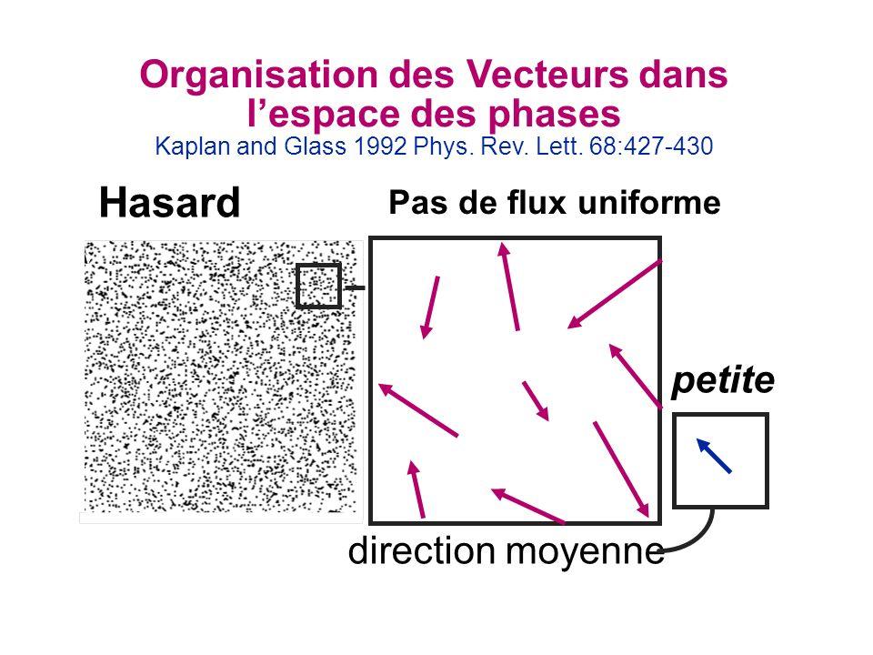 Organisation des Vecteurs dans lespace des phases Kaplan and Glass 1992 Phys. Rev. Lett. 68:427-430 petite direction moyenne Hasard Pas de flux unifor