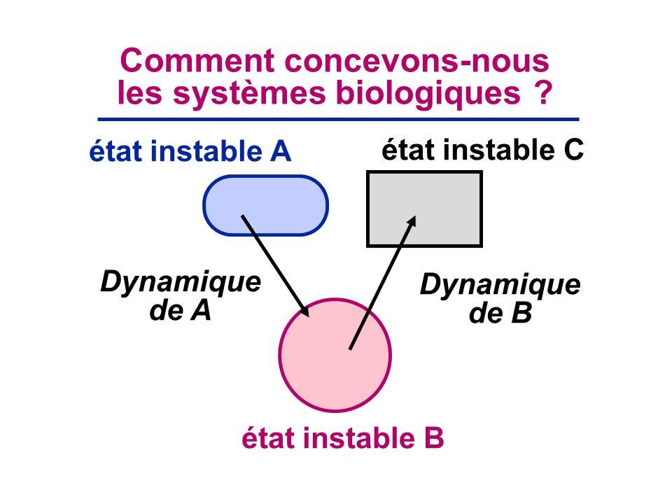 Dynamique de A Dynamique de B Comment concevons-nous les systèmes biologiques ? état instable B état instable A état instable C