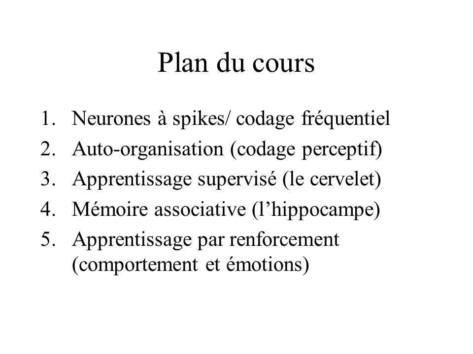 Plan du cours 1.Neurones à spikes/ codage fréquentiel 2.Auto-organisation (codage perceptif) 3.Apprentissage supervisé (le cervelet) 4.Mémoire associa
