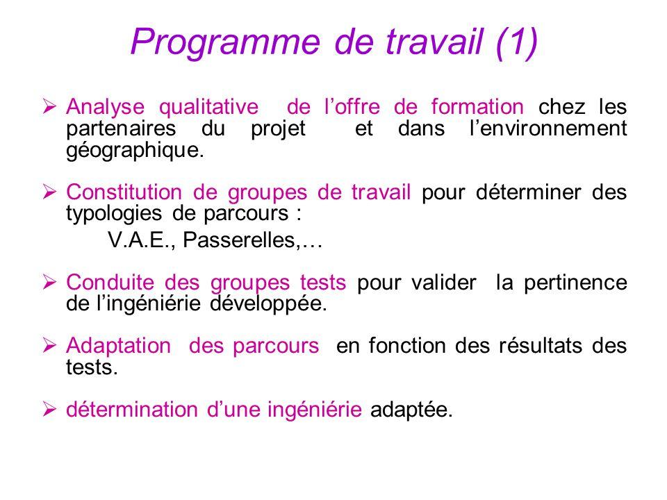 Programme de travail (1) Analyse qualitative de loffre de formation chez les partenaires du projet et dans lenvironnement géographique. Constitution d