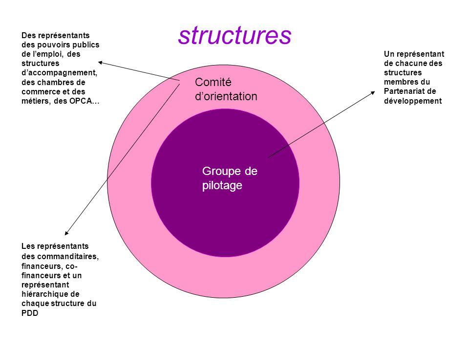 structures Groupe de pilotage Comité dorientation Un représentant de chacune des structures membres du Partenariat de développement Les représentants