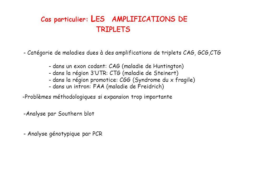Cas particulier: L ES AMPLIFICATIONS DE TRIPLETS - Catégorie de maladies dues à des amplifications de triplets CAG, GCG,CTG - dans un exon codant: CAG