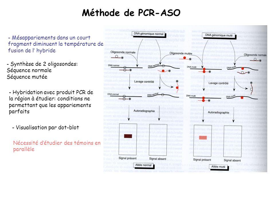 Méthode de PCR-ASO - Mésappariements dans un court fragment diminuent la température de fusion de l hybride - Synthèse de 2 oligosondes: Séquence norm