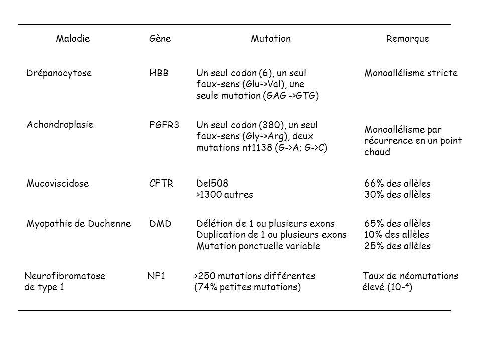 MaladieGèneMutationRemarque DrépanocytoseHBBUn seul codon (6), un seul faux-sens (Glu->Val), une seule mutation (GAG ->GTG) Monoallélisme stricte Acho