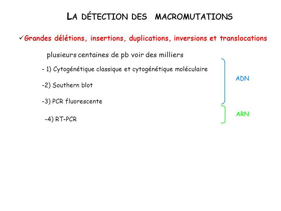 D ETECTION DES S UBSTITUTIONS Inconnues (Scanning ) -Clivage spécifique (chimique, enzymatique) -SSCP (Single strand Conformational Polymorphism) -DGGE (Denaturing gradient Gel Electrophoresis) -PTT (Protein Truncation Test): détection spécifique des codons STOP Connues (Screening) + séquençage -Southern ou PCR-hydrolyse pour mutations modifiant un site de restriction -Séquençage -PCR-ASO (Allele Specific Oligoprobe) -PCR-OLA (Oligonucleotide Ligation Assay) -PCR-ARMS (Amplification Refractory Mutation System) -PCR suivie dhybridation sur puces