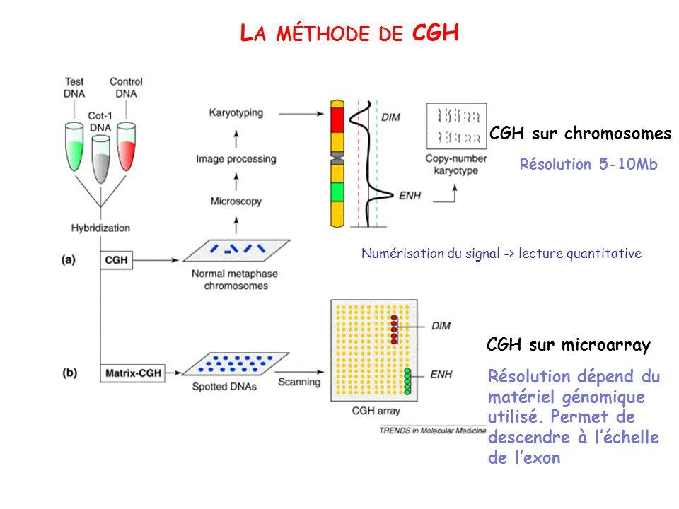 L A MÉTHODE DE CGH CGH sur chromosomes CGH sur microarray Résolution 5-10Mb Résolution dépend du matériel génomique utilisé. Permet de descendre à léc