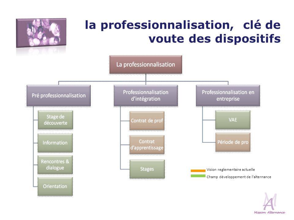 Vision reglementaire actuelle Champ développement de lalternance la professionnalisation, clé de voute des dispositifs