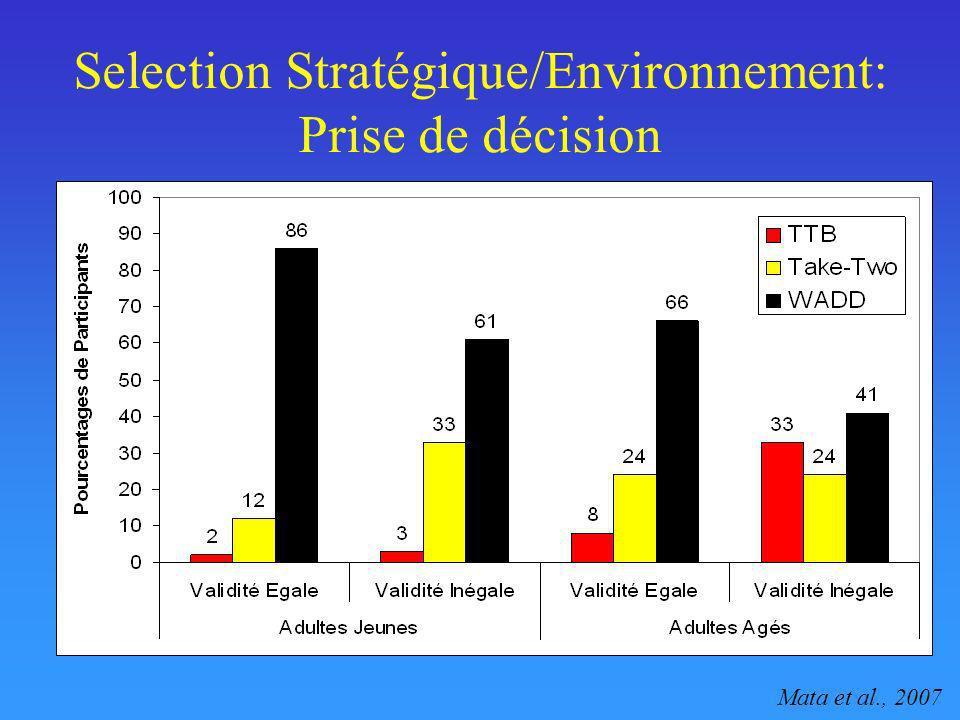 Selection Stratégique/Environnement: Prise de décision Mata et al., 2007