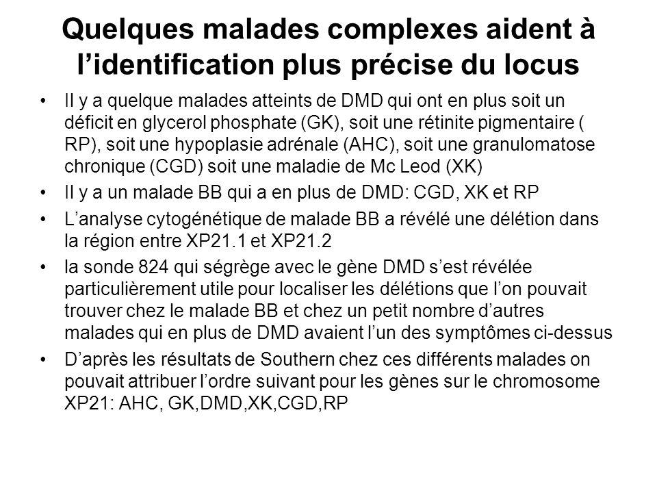 Quelques malades complexes aident à lidentification plus précise du locus Il y a quelque malades atteints de DMD qui ont en plus soit un déficit en gl
