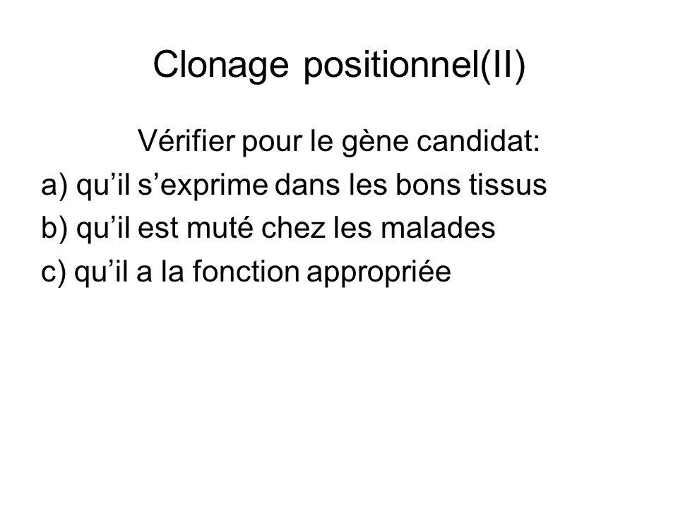 Clonage positionnel(II) Vérifier pour le gène candidat: a) quil sexprime dans les bons tissus b) quil est muté chez les malades c) quil a la fonction