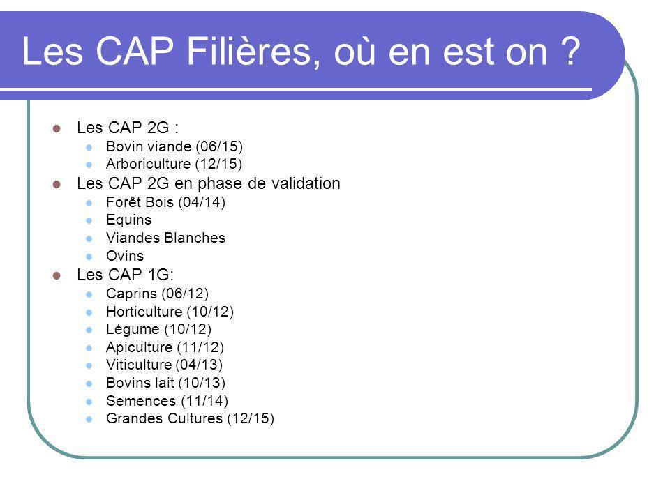 Les CAP Filières, où en est on ? Les CAP 2G : Bovin viande (06/15) Arboriculture (12/15) Les CAP 2G en phase de validation Forêt Bois (04/14) Equins V