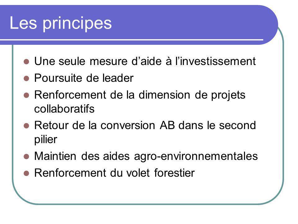 Les principes Une seule mesure daide à linvestissement Poursuite de leader Renforcement de la dimension de projets collaboratifs Retour de la conversi