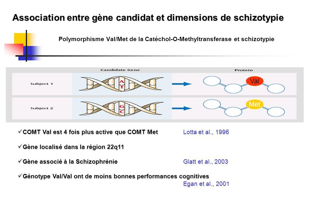 Polymorphisme Val/Met de la Catéchol-O-Methyltransferase et schizotypie COMT Val est 4 fois plus active que COMT MetLotta et al., 1996 COMT Val est 4