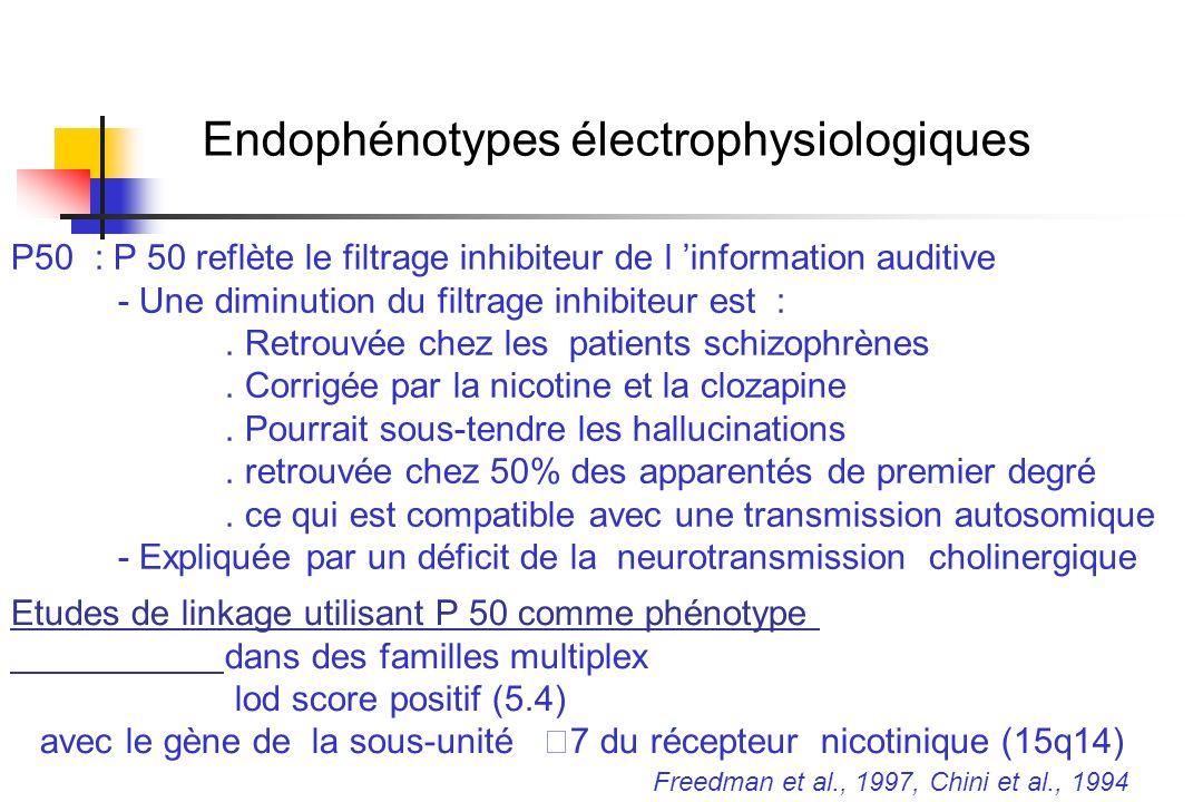 Endophénotypes électrophysiologiques P50 : P 50 reflète le filtrage inhibiteur de l information auditive - Une diminution du filtrage inhibiteur est :