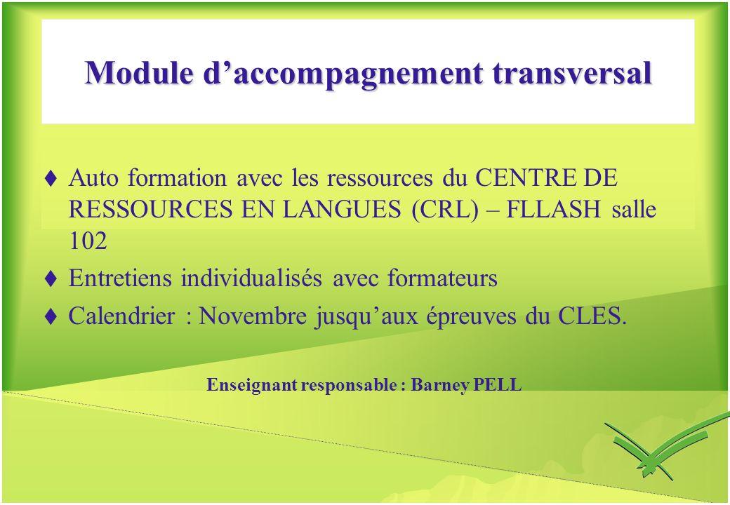 Module daccompagnement transversal Auto formation avec les ressources du CENTRE DE RESSOURCES EN LANGUES (CRL) – FLLASH salle 102 Entretiens individua