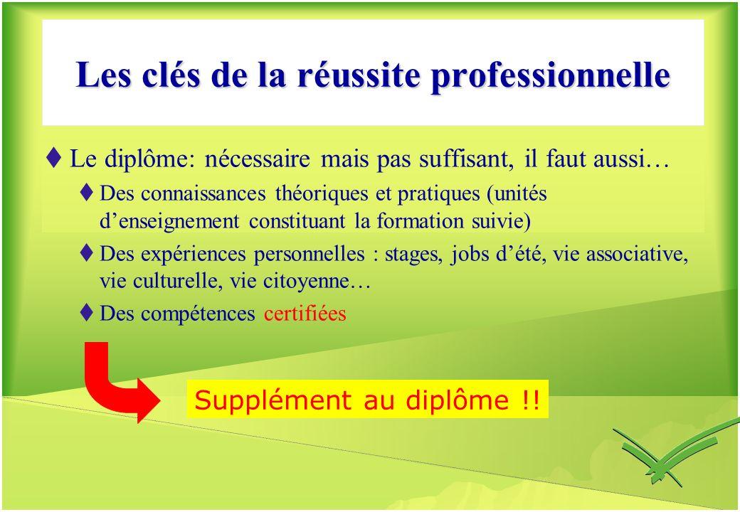 Les clés de la réussite professionnelle Le diplôme: nécessaire mais pas suffisant, il faut aussi… Des connaissances théoriques et pratiques (unités de