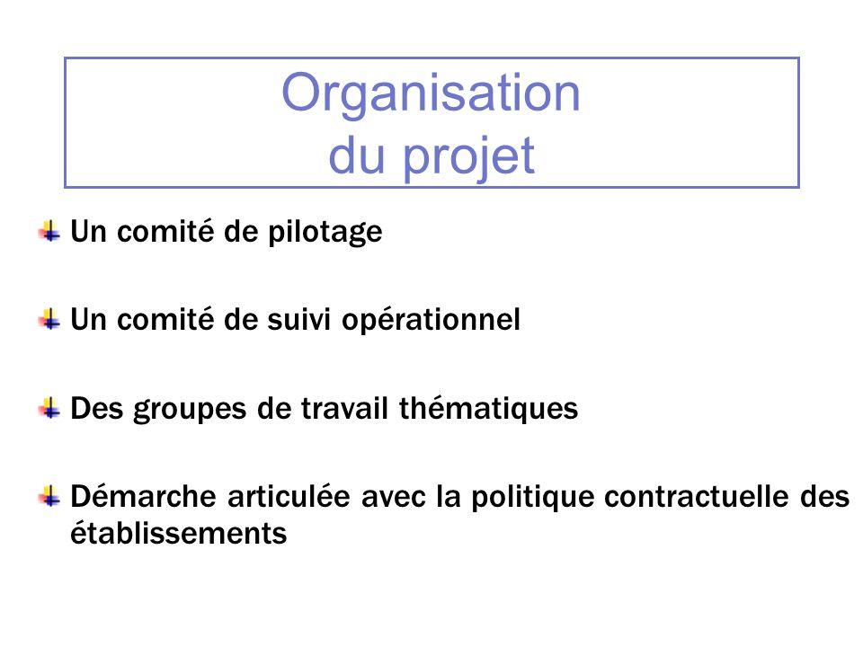 Organisation du projet Un comité de pilotage Un comité de suivi opérationnel Des groupes de travail thématiques Démarche articulée avec la politique c
