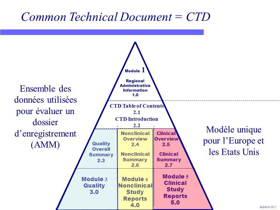 Common Technical Document = CTD Module 1 Regional Administrative Information 1.0 Nonclinical Overview 2.4 Nonclinical Summary 2.6 Clinical Overview 2.