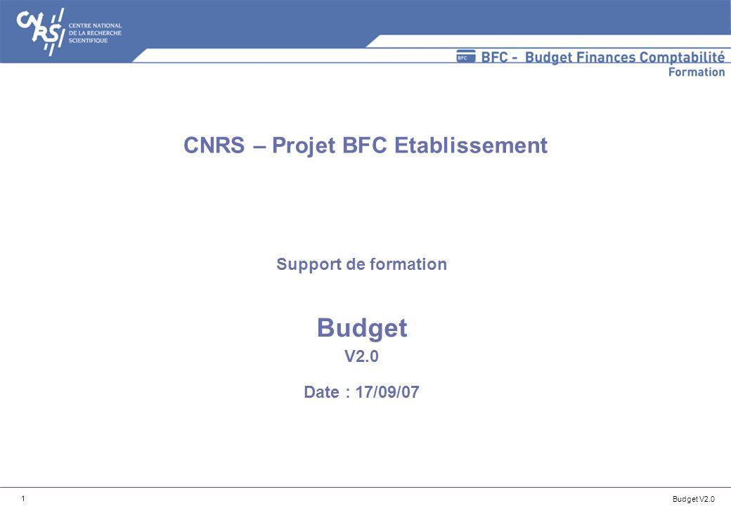 Budget V2.0 52 Détails des états disponibles : tableau de bord Prévision et exécution des recettes par centre financier (délégation) n Colonnes disponibles pour la variante Suivi des recettes sur contrats : n PR déléguées : total des prévisions de recettes déléguées aux délégations (hors pièces budgétaires préenregistrées), en version dexécution (0), sur le budget de paiement, sur le compte budgétaires de recettes R2CONTRATS-RECHERCHE, et pour le (ou les) centre financier (s) étudié(s).