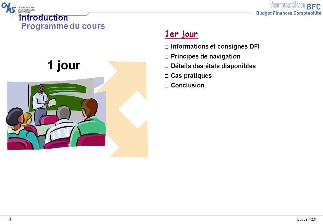 Budget V2.0 14 Principes de navigation Principes de navigation dans les tableaux de bord : Rappels n Trois types de groupes sont possibles dans BFC : n Groupe de centres financiers : CNRS, DS, DR, Unités n Groupe de comptes budgétaires : DEPENSE, RECETTES, NA, NB, NC, R1, R2, R3 et R4 n Groupe de domaines fonctionnels : A1, A2-A3, LOLF