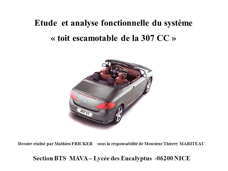 Dossier réalisé par Mathieu FRICKER sous la responsabilité de Monsieur Thierry MARITEAU Section BTS MAVA – Lycée des Eucalyptus -06200 NICE Etude et a