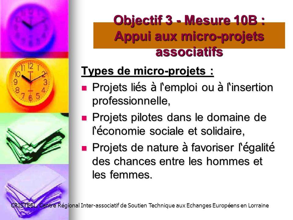 Types de micro-projets : Projets li é s à l emploi ou à l insertion professionnelle, Projets li é s à l emploi ou à l insertion professionnelle, Proje