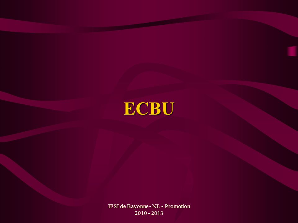 IFSI de Bayonne - NL - Promotion 2010 - 2013 ECBU