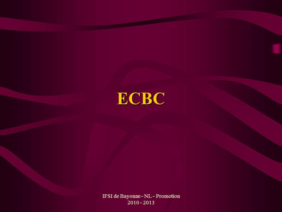IFSI de Bayonne - NL - Promotion 2010 - 2013 ECBC