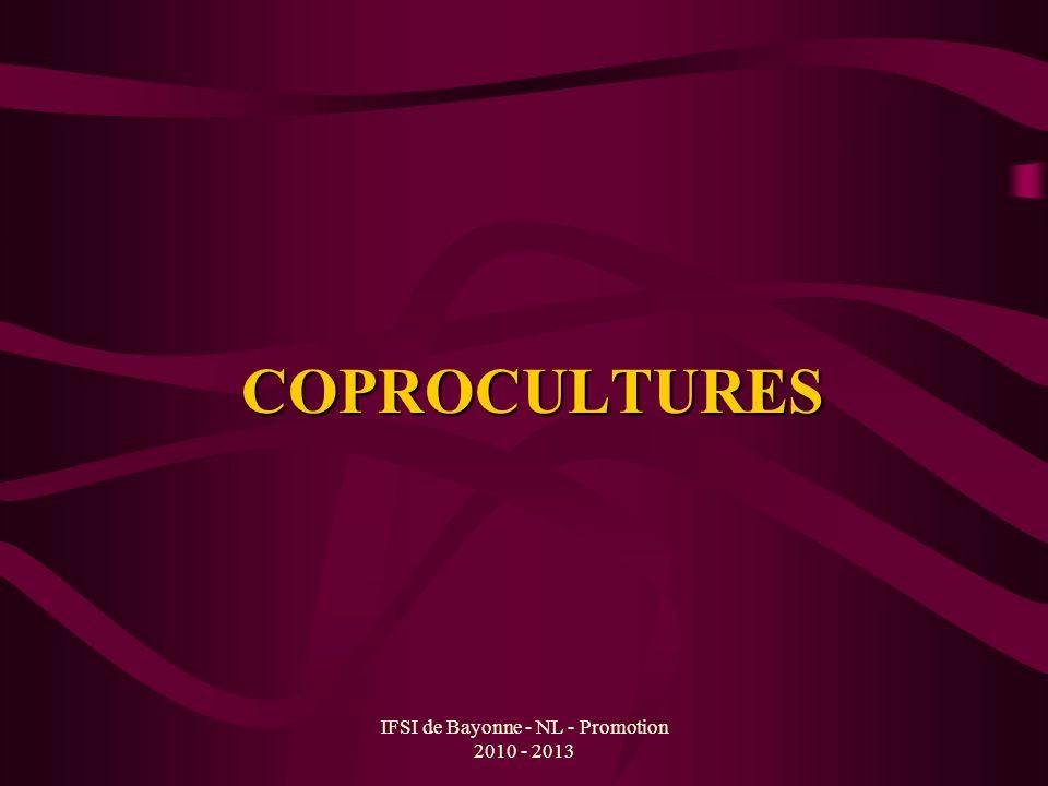 IFSI de Bayonne - NL - Promotion 2010 - 2013 COPROCULTURES