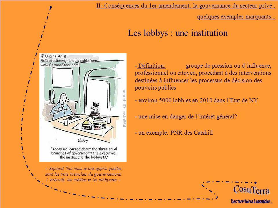 Les lobbys : une institution II- Conséquences du 1er amendement: la gouvernance du secteur privé : quelques exemples marquants...