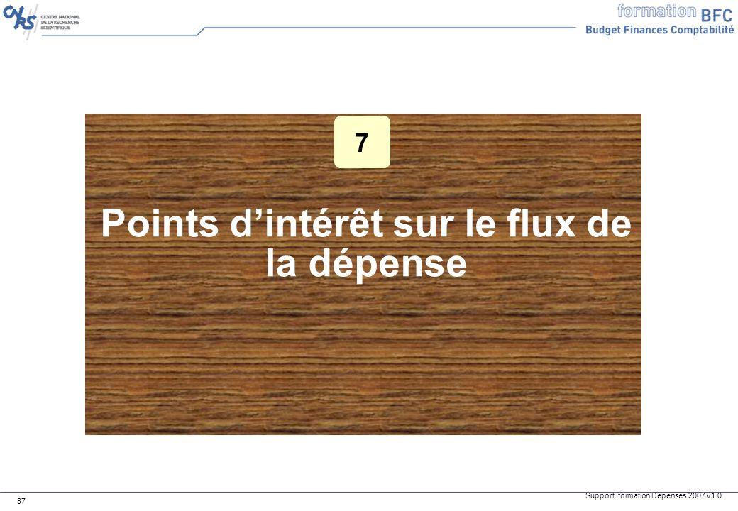 Support formation Dépenses 2007 v1.0 87 Points dintérêt sur le flux de la dépense 7