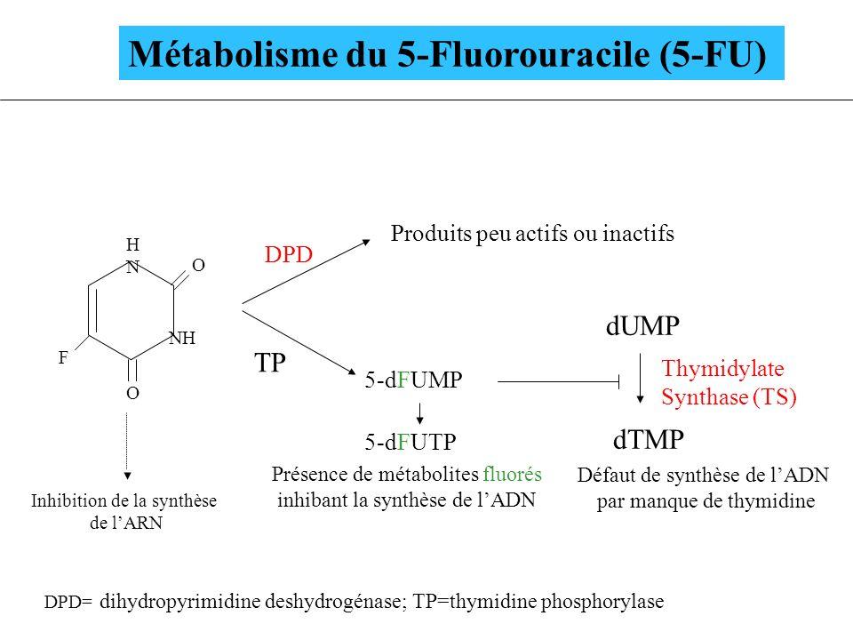 Métabolisme du 5-Fluorouracile (5-FU) HNHN NH F O O DPD Produits peu actifs ou inactifs 5-dFUMP 5-dFUTP dUMP dTMP Présence de métabolites fluorés inhi