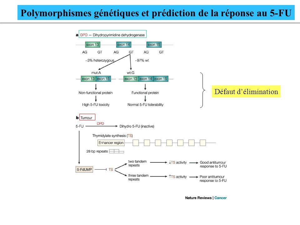 Polymorphismes génétiques et prédiction de la réponse au 5-FU Défaut délimination