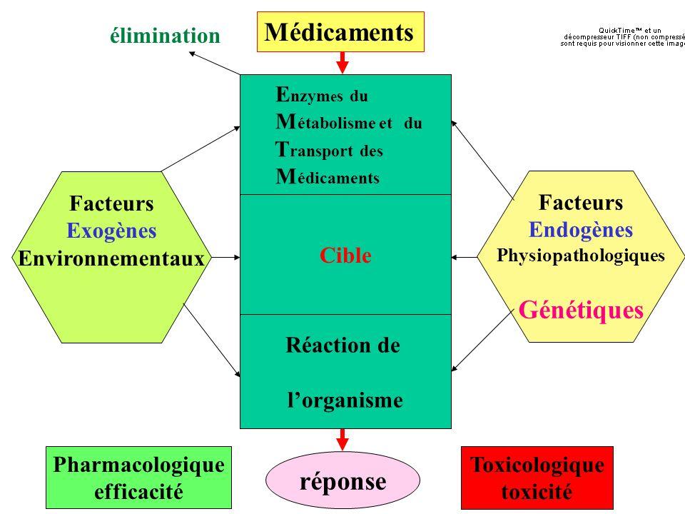 Déficits génétiques en enzymes du métabolisme des xénobiotiques CYP 1A1(induction ~ 10%) CYP 2A6* (5%) CYP 2C9 (3%) CYP 2C18 (?) CYP 2C19(5-20%) CYP 2D6* (5-7%) CYP 2E1(>1%) CYP3A4/5 (?) GSTM1* (50%) GSTT1 (10-20%) GSTP1 (10%) UGT1A1 (5-10%) NAT2 (50%) EH (<5%) TPMT(<1%) * : gènes pour lesquels une duplication est connue Les fréquences varient selon les populations: ethnopharmacogénétique