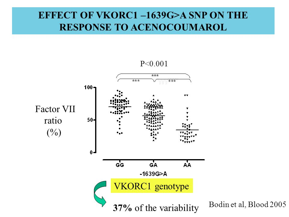 EFFECT OF VKORC1 –1639G>A SNP ON THE RESPONSE TO ACENOCOUMAROL Factor VII ratio (%) VKORC1 genotype 37% of the variability P<0.001 Bodin et al, Blood