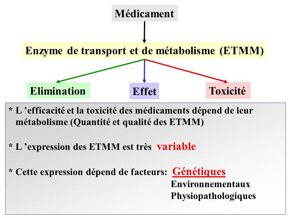 Médicament Enzyme de transport et de métabolisme (ETMM) Elimination Effet Toxicité * L efficacité et la toxicité des médicaments dépend de leur métabo