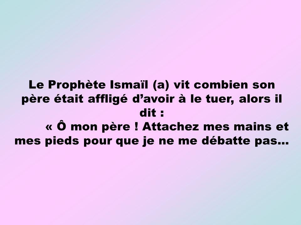 Le Prophète Ismaïl (a) vit combien son père était affligé davoir à le tuer, alors il dit : « Ô mon père ! Attachez mes mains et mes pieds pour que je