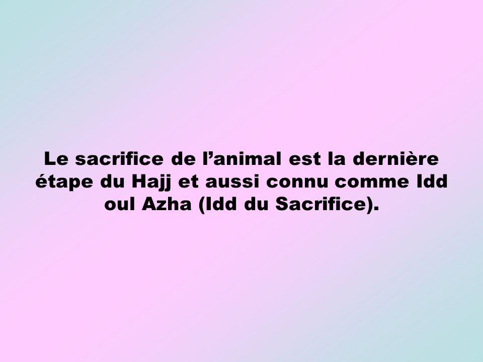 Le sacrifice de lanimal est la dernière étape du Hajj et aussi connu comme Idd oul Azha (Idd du Sacrifice).