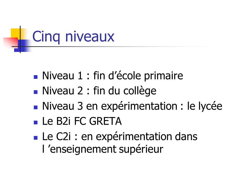 Cinq niveaux Niveau 1 : fin décole primaire Niveau 2 : fin du collège Niveau 3 en expérimentation : le lycée Le B2i FC GRETA Le C2i : en expérimentati