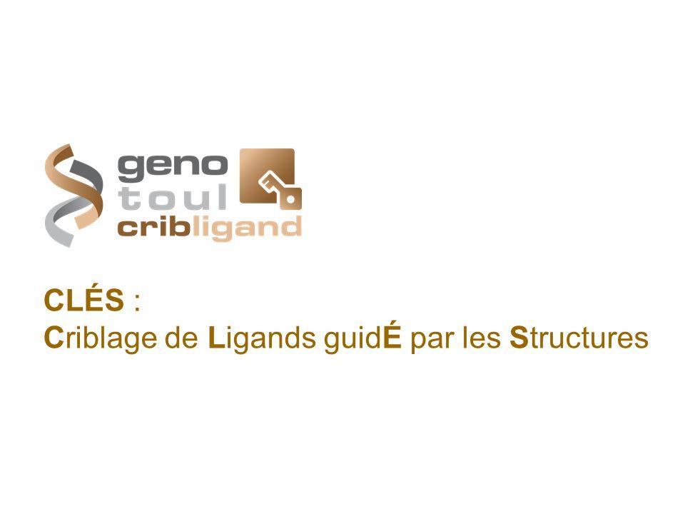 CLÉS : Criblage de Ligands guidÉ par les Structures