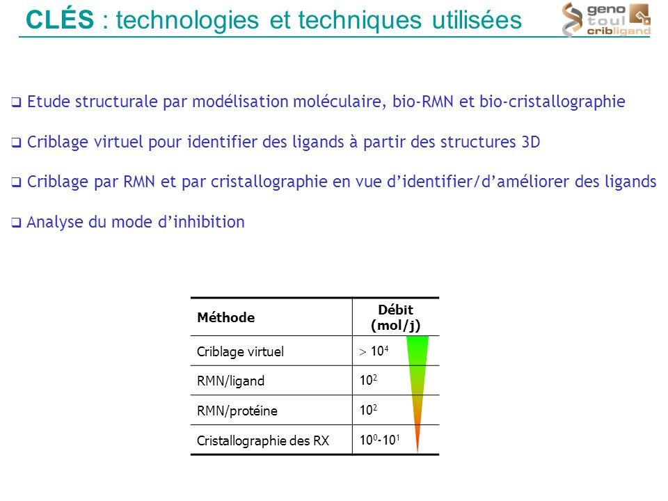 Méthode Débit (mol/j) Criblage virtuel 10 4 RMN/ligand 10 2 RMN/protéine 10 2 Cristallographie des RX 10 0 -10 1 CLÉS : technologies et techniques uti
